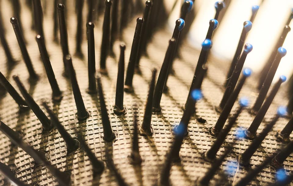best wet brush
